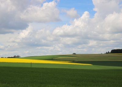 Oberschwabens-Farbfelder